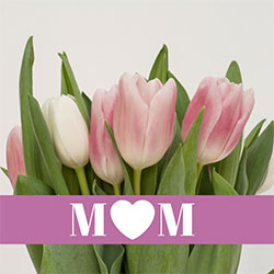 Boston O&P Employees Celebrate Their Moms on Mother's Day